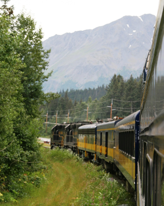 Train going around curve and trees in Alaska